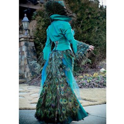 Yaya Han Peacock Jacket, Corset and Skirt